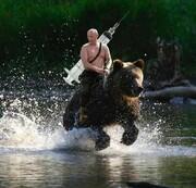 عکس | پوتین سوار بر خرس با واکسن کرونا
