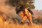 آتشسوزی چه بلایی سر جنگلهای زاگرس میآورد؟