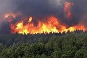 امیدواری برای کم شدن سرعت ویرانی جنگلها؛ تهیه نقشههای پیشبینی آتشسوزی