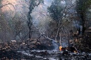 مهار آتشسوزی میانکاله پس از ۱۲ ساعت