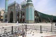 دور عاشقـــان آمد نوبت محرم شد / مراسم متفاوت محرم در امامزاده صالح(ع)