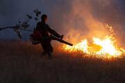 سرایت آتش از فارس به یزد   جنگلهای خاتم در آتش میسوزد
