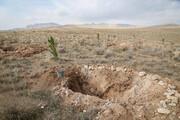 بهرهبرداری از ۵۱ طرح منابع طبیعی در جنوب استان