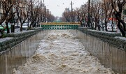 خطر سیلاب در کمین تهران | هشدار سازمان جنگلها به استانداری و مدیریت شهری