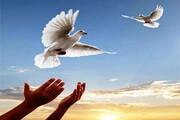 آزادی ۱۷ نفر از زندانیان جرائم غیرعمد در شهرستان البرز