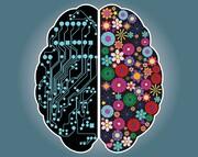 اینفوگرافیک | تاثیر نیمکرههای مغز بر عملکرد افراد | چگونه بازدهی فردی خود را افزایش دهیم؟