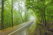 بارش پراکنده باران در استانهای شمالی ایران