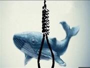 خودکشی دستهجمعی ۴ جوان در دریای خزر | باز هم پای بازی نهنگ آبی وسط بود؟