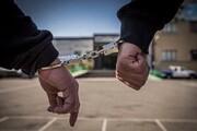 دستگیری متخلفان زندهگیری پرندگان شکاری در شاهرود