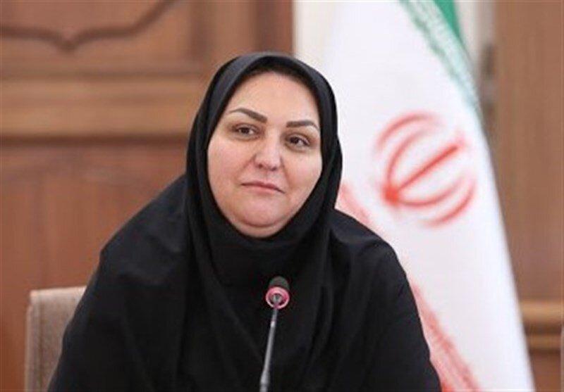 پروانه اصلانی - مدیرکل دفتر اقتصاد مسکن وزارت راه و شهرسازی