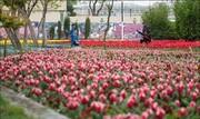 بوستان زندگی در محله هرندی تهران افتتاح شد