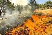 ۲۰ هکتار از مراتع طبیعی دهلران طعمه حریق شد