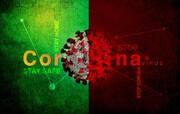نمودارمقایسهای مبتلایان و جانباختگان کرونا در ایران با دیگر کشورها را دیدهاید؟ | جمعیت جهانی کرونا از ۲۹ میلیون نفر بیشتر شد