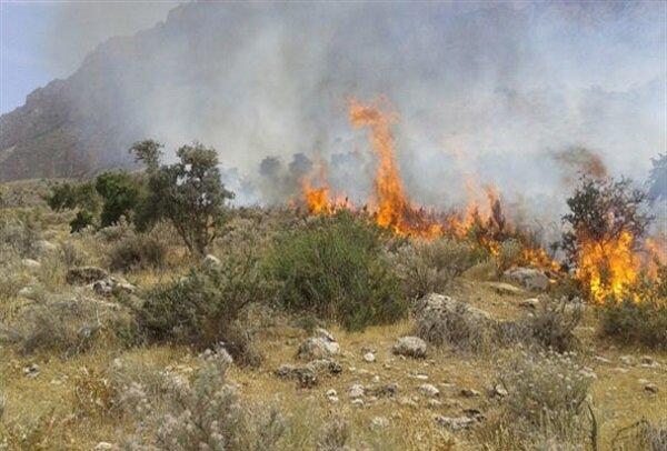 آتش در مراتع