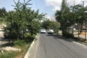 خیابان شهید هلیسایی نمونه میشود