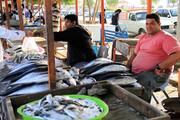 برخورد قانونی با عاملان فروش غیربهداشتی آبزیان در بندرعباس