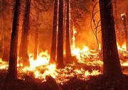 نگرانی از تاثیر تغییرات اقلیمی بر آتشسوزی بزرگترین تالاب جهان