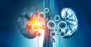 کووید-۱۹ میتواند آسیب شدیدی به کلیهها بزند