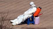 شمار موارد کرونا در جهان به ۳۰ میلیون رسید| شمار مرگها حدود یک میلیون نفر است