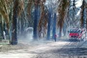 ۱۸۵۰ اصله درخت خرما در نیکشهر خاکستر شد