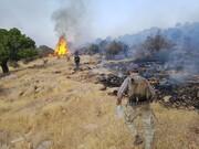 مهار آتشسوزی ارتفاعات پاسارگاد و مرودشت