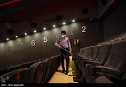 شش ماه کرونا زده سینما چگونه گذشت؟