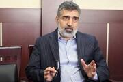 واکنش سخنگوی سازمان انرژی اتمی به خبر ترور دانشمند هستهای کشورمان