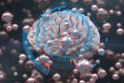 ابتلا به کرونا احتمال بیماری پارکینسون را افزایش میدهد