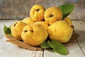 میوه شگفتانگیزی که هم ضدویروس است هم شما را لاغر میکند