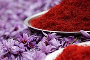 سلاطین زعفران عامل کاهش قیمت طلای سرخ در بازار