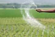 اعتراض کشاورزان به توزیع نامناسب کود شیمیایی