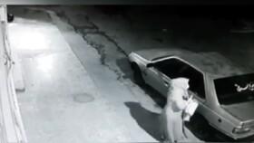 ویدئو | سرقت وحشیانه ۳ مرد مسلح از یک زن در دزفول