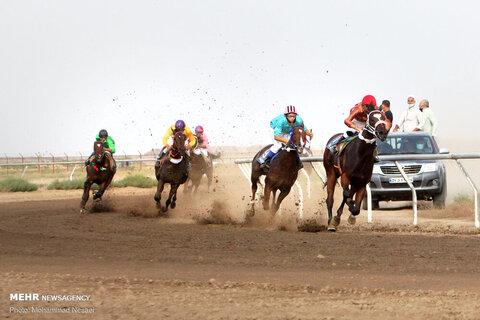 4498418 - تصاویری زیبا از کورس اسبدوانی پاییزه