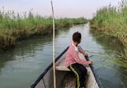 افزایش ۱۰ درصدی تنوع زیستی در تالابهای خوزستان
