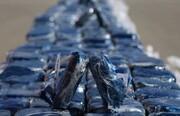 کشف ۱۸ کیلو تریاک از ۲ قاچاقچی در دیواندره