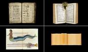 تصاویر | مجموعه عجیبترین کتابهای دنیا | از کتابی با پوست انسان تا برشهایی از پنیر آمریکایی