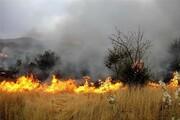 آتشسوزی در ارتفاعات شاه بهرام باشت