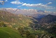 هر ثانیه ۳۶۰ مترمربع از طبیعت ایران محو میشود   تا ۶۰ سال دیگر جنگل نخواهیم داشت