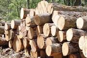 کشف ۲ تن چوب قاچاق در بویراحمد