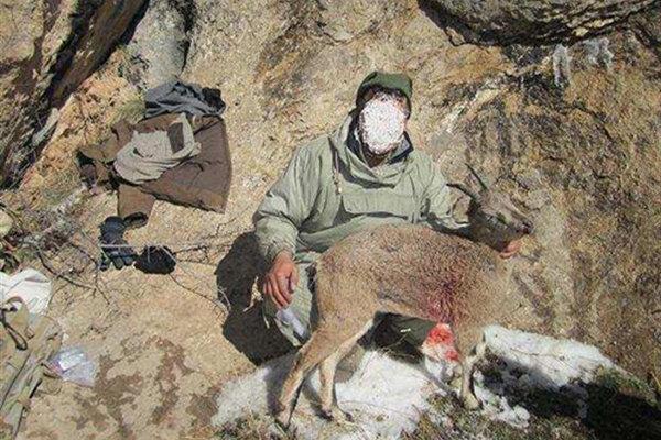 شکارچیان غیر مجاز