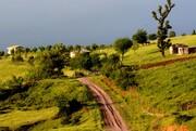 تب ویلاسازی از شالیزارها به گندمزارهای رودبار سرایت کرد