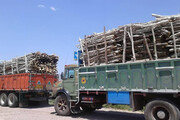 بازداشت ۲ متهم و کشف ۲۰ تن چوب قاچاق در بهار