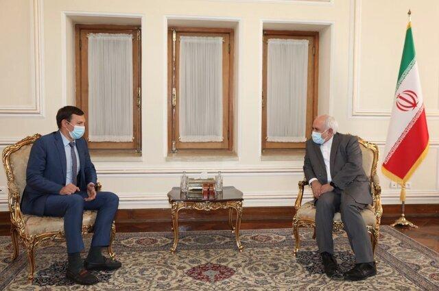 دیدار رئیس هیات اوکراینی با ظریف