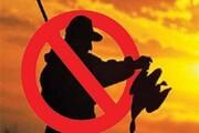 صید و شکار پرندگان مهاجر ممنوع!