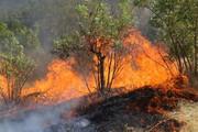آتش زدن بقایای محصول کشاورزی در اسفراین ممنوع شد