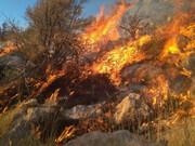 آتشسوزی در ۴ روستای بیجار