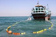 صید ترال در سواحل مکران متوقف شد