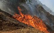 ۶ هکتار از جنگلهای معمولان پلدختر در آتش سوخت