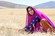 درخشش فیلم خوزستانی در جشنواره فیلمهای کودک و نوجوان