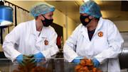 اهدای هزاران وعده غذا از سوی منچستریونایتد به کودکان